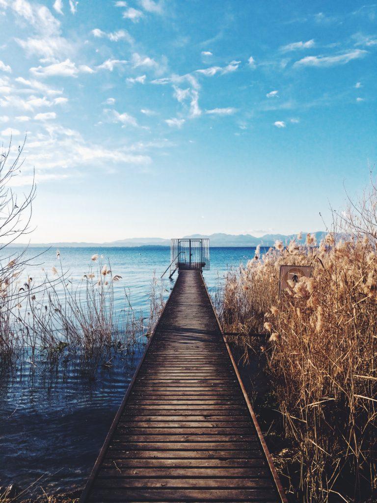 Steg in einen See unterm blauen Himmel, rechts vom Steg - dicker brauner Schilf, links nur vereinzelt